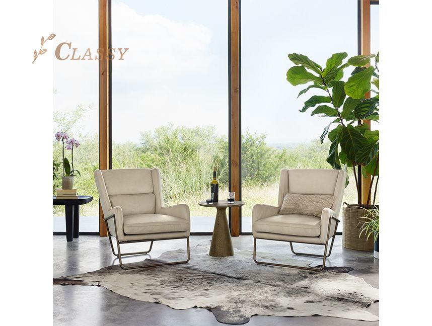 Modern Stainless steel Living room Leisure chair